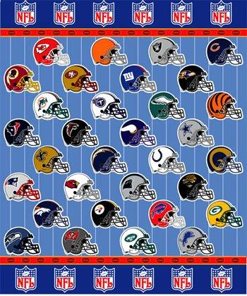NFL MICRO SUPER PLUSH RASCHEL THROW-BLANKET