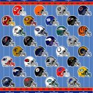 NFL MICRO SUPER PLUSH RASCHEL THROW-BLANKET