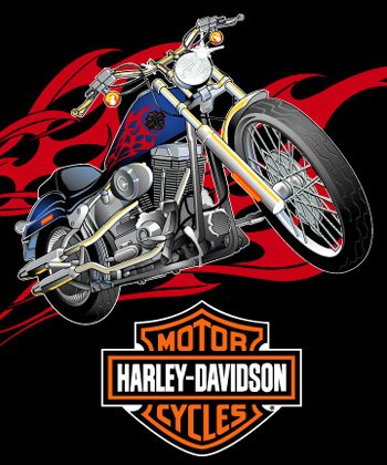 HARLEY DAVIDSON MICRO SUPER PLUSH RASCHEL THROW-BLANKET