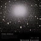 Chris Jordan 2009 Art Exhibition Ad Advert Light Bulbs Windsor Gallery Vancouver