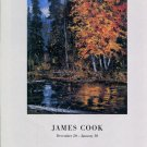 James Cook 1997 Art Exhibition Ad Advert Silver King