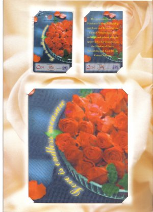 valentine (mint) Transport card- Limited edition.