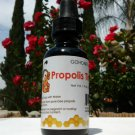 1 fl oz. Propolis Tincture Extract (50%)