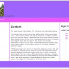 Simple Pink and Purple Web Template