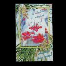 CHRISTMAS BERRIES RUSSIAN LANGUAGE NEW YEAR CHRISTMAS CARD