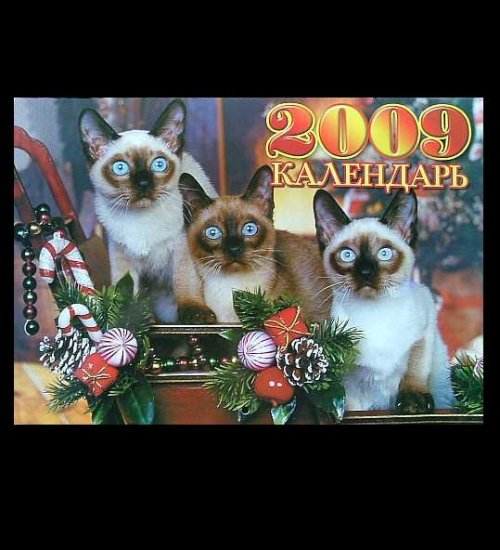 THE FELINE CAT RUSSIAN UKRAINIAN LANGUAGE CALENDAR 2009