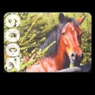 BAY HORSE RUSSIAN UKRAINIAN LANGUAGE CALENDAR BOOKMARK 2009