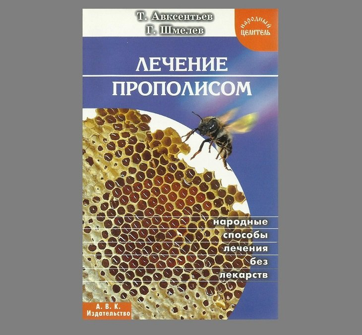 RUSSIAN LANGUAGE TREATMENT WITH HONEYCOMB AND HONEY MEDICAL BOOK