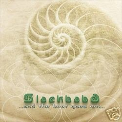 SLACKBABA AND THE BEAT GOES ON DOWNTEMPO AMBIENT CD