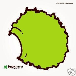SHEX SHEDR BPOQD RARE JAPANESE OOP IDM EXPERIMENTAL CD