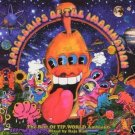 RAJA RAM SPACESHIPS OF THE IMAGINATION TIP.WORLD OOP CD