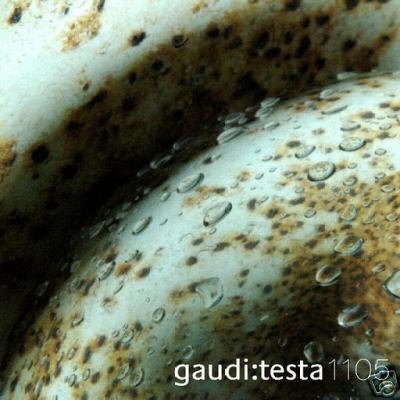 GAUDI & AND TESTA 1105 CONTINVVM COLLECTORS TRANCE CD