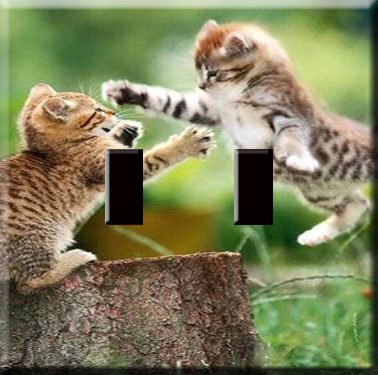 Playful Kittens Handcrafted Double Switchplate Cover