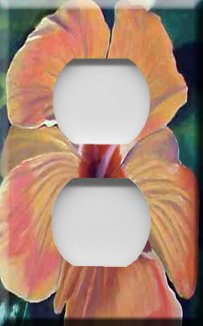 Hibiscus Painting Handcrafted Outlet Cover