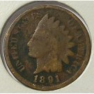 1891 Indian Head Cent AG #545