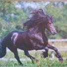 Black Friesian Mouse Pad