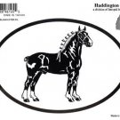 Belgian Draft Horse Oval Decal