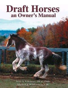 Draft Horses: An Owner's Manual Book