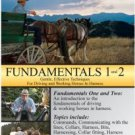Doc Hammill's Horsemanship Video Series Fundamentals I & II - DVD