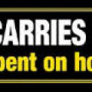 Driver Carries No Cash! Bumper Sticker