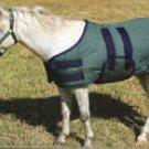 600 Denier Miniature Horse Turnout Blanket - Large