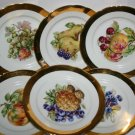 Collection of 6 Czechoslovakia Royal Fruit Porcelain Pottery Plates