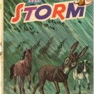 VINTAGE KIDS BOOK The Storm