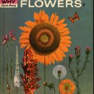 The How Why Wonder Book Wildflowers Deluxe Grace Ferguson, Cynthia & Alvin Koehler 1962 Vintage Kids
