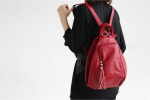 Multi-use Charming korean Style Backpack