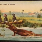 "Vintage Black Americana Postcard ""An All-in-Gator Lunch in Florida"""