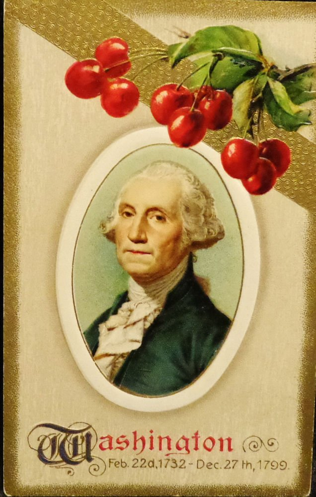 Vintage George Washington Birthday Postcard  Divided Back Unused Embossed