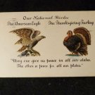 Vintage Thanksgiving Postcard  Embossed Design Undivided Back Postmarked 1906
