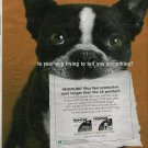2005 Print Ad for Frontline Flea Protection~Pictures Cute BOSTON TERRIER Dog