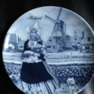 AUTHENTIC DELFT BLAUW PLATE *** TER STEEGE B.V.**** 6 3/4 DIAMETER WALL PLAGUE