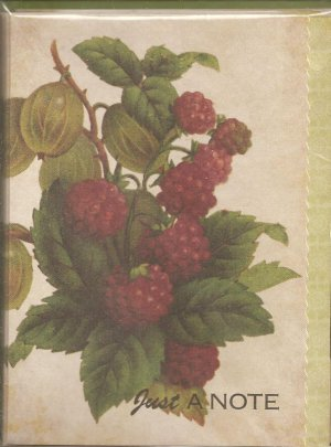 New Just a Note Raspberry Greeting Cards or Notecards - 8 Pack