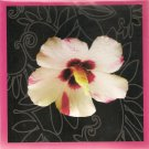 New Dashing Flower Greeting Cards or Notecards - 6 Pack