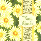 Many Thanks Note Cards - 6 Pack
