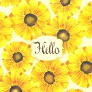 Hello Note Cards - 6 Pack
