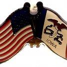 U.S. & STATE FLAG LAPEL PIN- Iowa