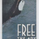 Chase Card insert Trading Card Single 1995 Skybox Free Willy #SP8 *ED