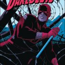 Daredevil #15 VF/NM