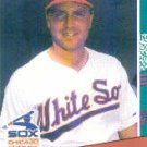 1991 Donruss 589 Shawn Hillegas