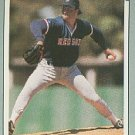 1991 Leaf 215 Matt Young