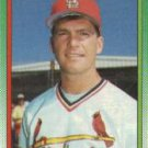 1990 Topps 209 Greg Mathews