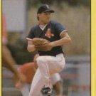 1991 Fleer 94 Wes Gardner