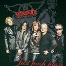 Aerosmith Just Push Play 2001 concert tour shirt size large