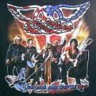 Aerosmith Stone Temple Pilots 2002 Just Push Play long sleeved concert tour shirt xl