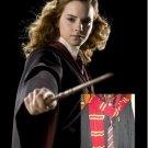 Wizarding World of Harry Potter HERMIONE GRANGER COSTUME Halloween Movie Quality