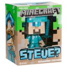 Minecraft Diamond Steve Vinyl Toy 6 Inches Tall in Collectors Box Limited
