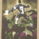 Marvel Heroes and Villains (Rittenhouse 2010) Parallel Card #69- Punisher vs. Skrull EX